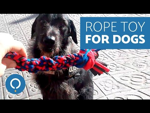diy-rope-toy-for-dogs---crafts-with-waste-material