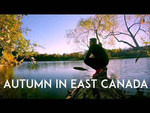 Ottawa & Montreal Road Tripping || HeimawayfromHome Vlog 3