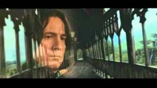 Убей меня нежно (Killing me softly - Harry Potter: Hermione & Severus)