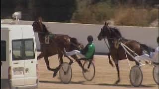 Vidéo de la course PMU PRIX ALEX KID
