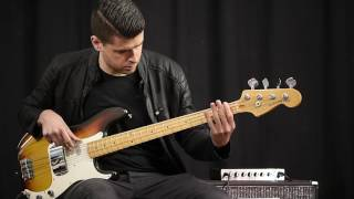 Eich Amplification 210M Cabinet + T-500 Bass Amp demo with Daniel van der Molen