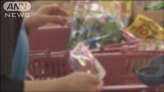 レジ袋「有料化」義務付け 来年中に法律制定の方針(19/06/03)