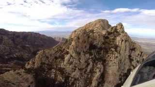 Bringing Bighorn Sheep Back to the Catalina Mountains