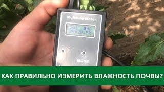 как правильно измерить влажность почвы?