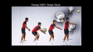 Hướng dẫn kỹ thuật bóng chuyền thấp tay - Vui học cùng ANC - Tinhocthanhan.violet.vn