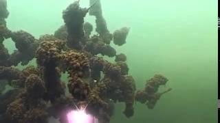 Під водою, Бурштиновий кар'єр