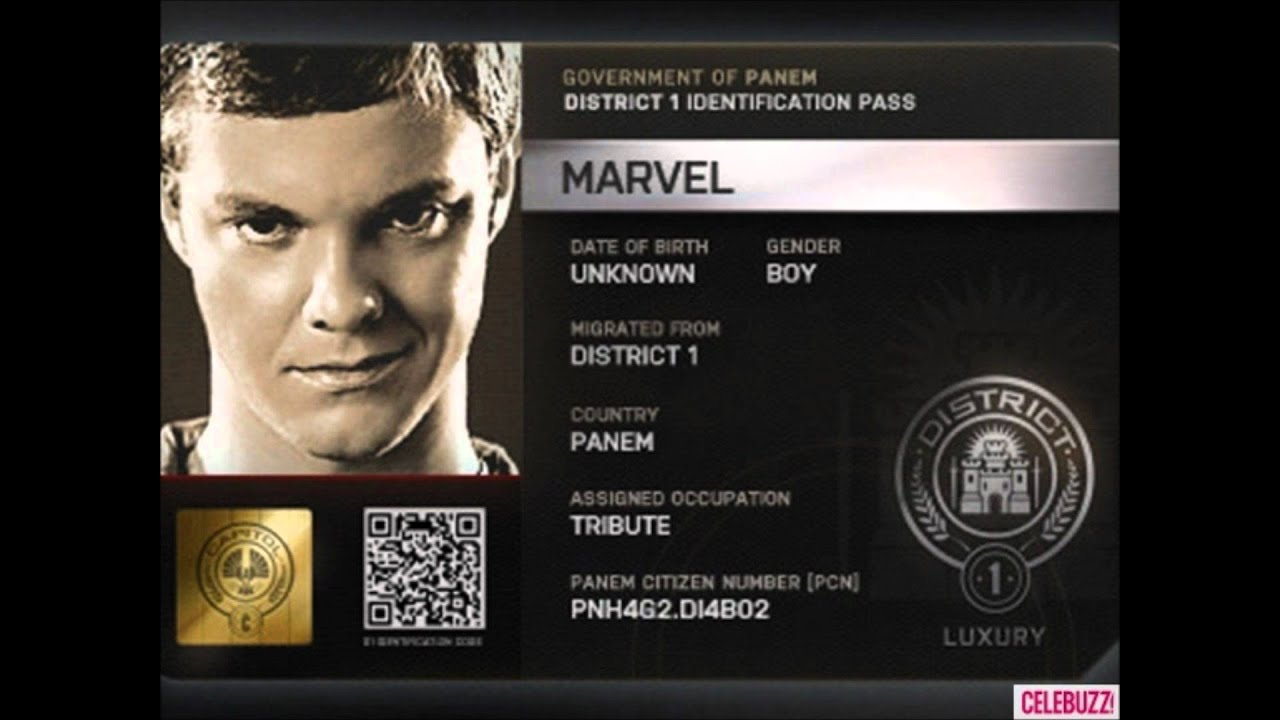 district 1 hunger games