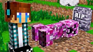 ACONTECEU ALGO TRISTE COM A MINHA NAMORADA CREEPER !!  - [ Vida de Creeper #12 ] - Minecraft
