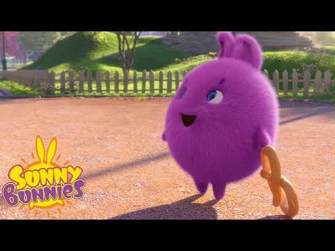 Cartoons For Children | SUNNY BUNNIES MAGIC CARPET | NEW SEASON | Funny Cartoons For Children