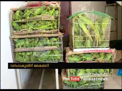 Two Tamil Nadu natives arrested for Trafficking 200 parrots | FIR 2 Sep 2017