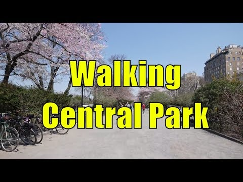 ⁴ᴷ Walking Tour of Central Park, NYC during Spring from 59th - 110th Streets