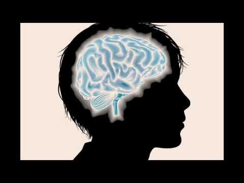 El cerebro del adolescente: riesgo y oportunidad