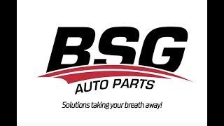 BSG Auto Parts | Introduction