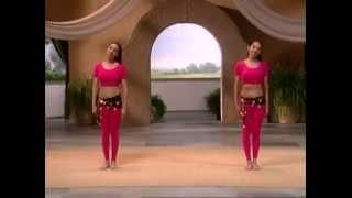 4. Вина и Нина Бидаши. Танец живота для начинающих. Сжигаем лишнее