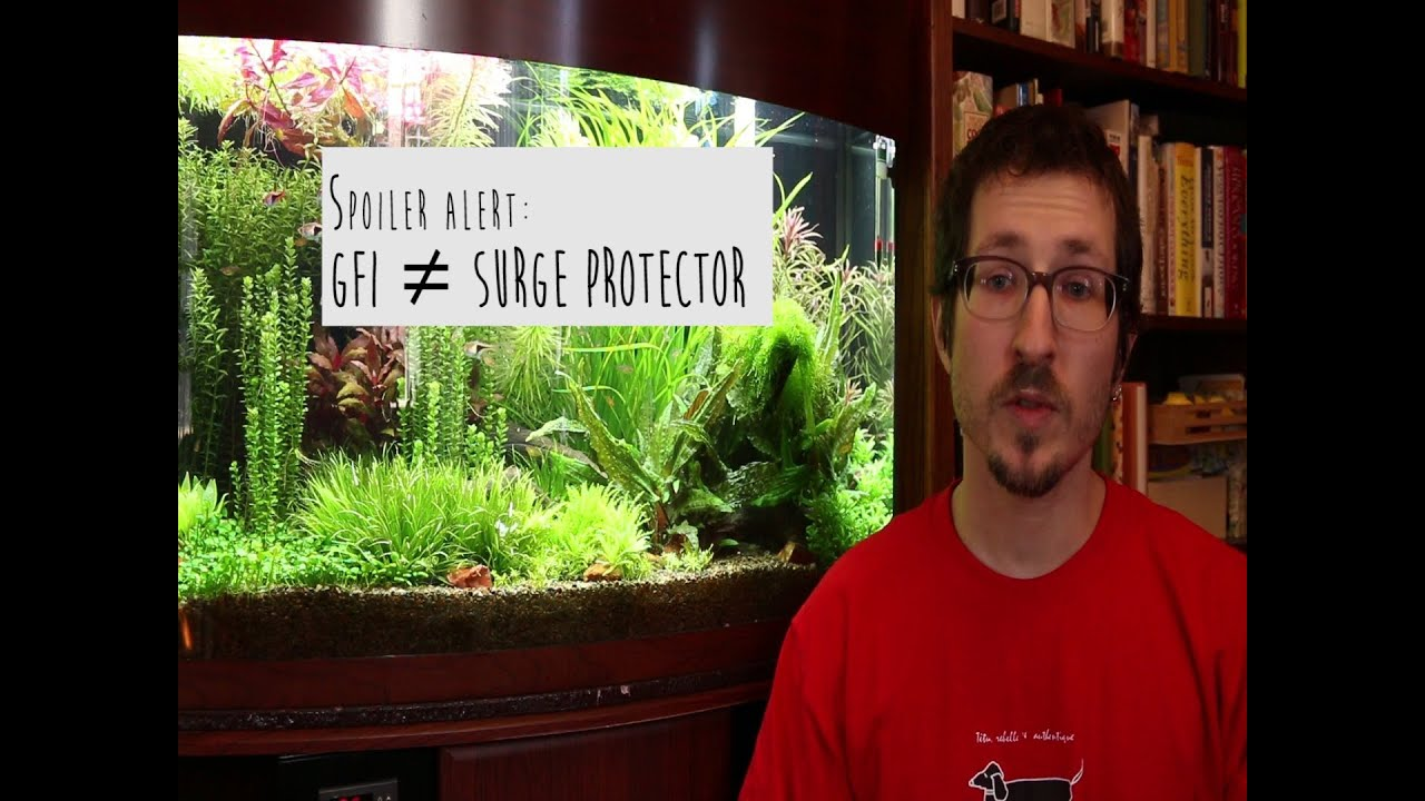 Electricity In The Aquarium Gfci Vs Surge Protectors Part2 Youtube