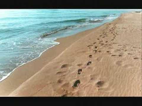 Orme sulla sabbia youtube - Immagini di spongebob e sabbia ...