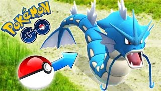 Pokemon Go - GYARADOS 100% Perfect! (400 Magikarp candies)