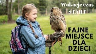 Fajne miejsce dla dzieci - Frajdalandia - PROJEKT WAKACJE - Ugotowani.tv HD
