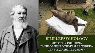 История гипноза. Гипноз животных и человека по В.Я. Данилевскому.