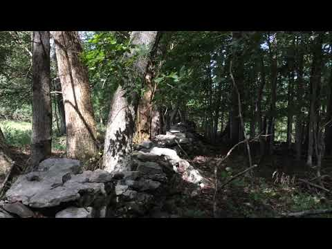 Bledsoe Creek State Park, Gallatin, TN