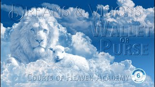 D4 - Part 4: Dreams  & Visions - Lost Purse
