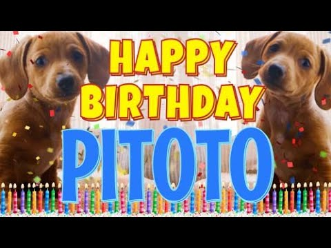 Download Happy Birthday Pitoto! ( Funny Talking Dogs ) What Is Free On My Birthday