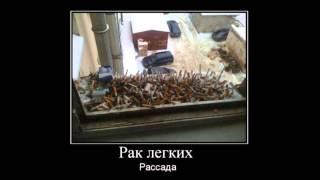Прикольные демотиваторы за 26 июня 2014!