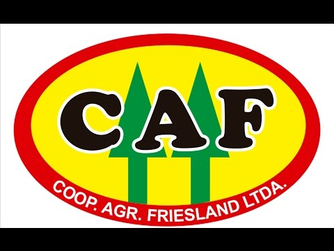 Kooperative Friesland