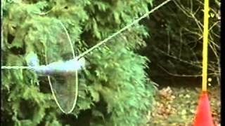 Mission Impossible Squirrel - Squirrel Passes An Obstacle Course To Raid The Bird Feeder