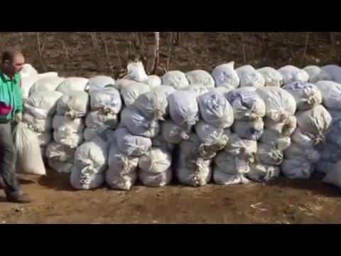 Конский навоз от фермера, бесплатная доставка по московской области !