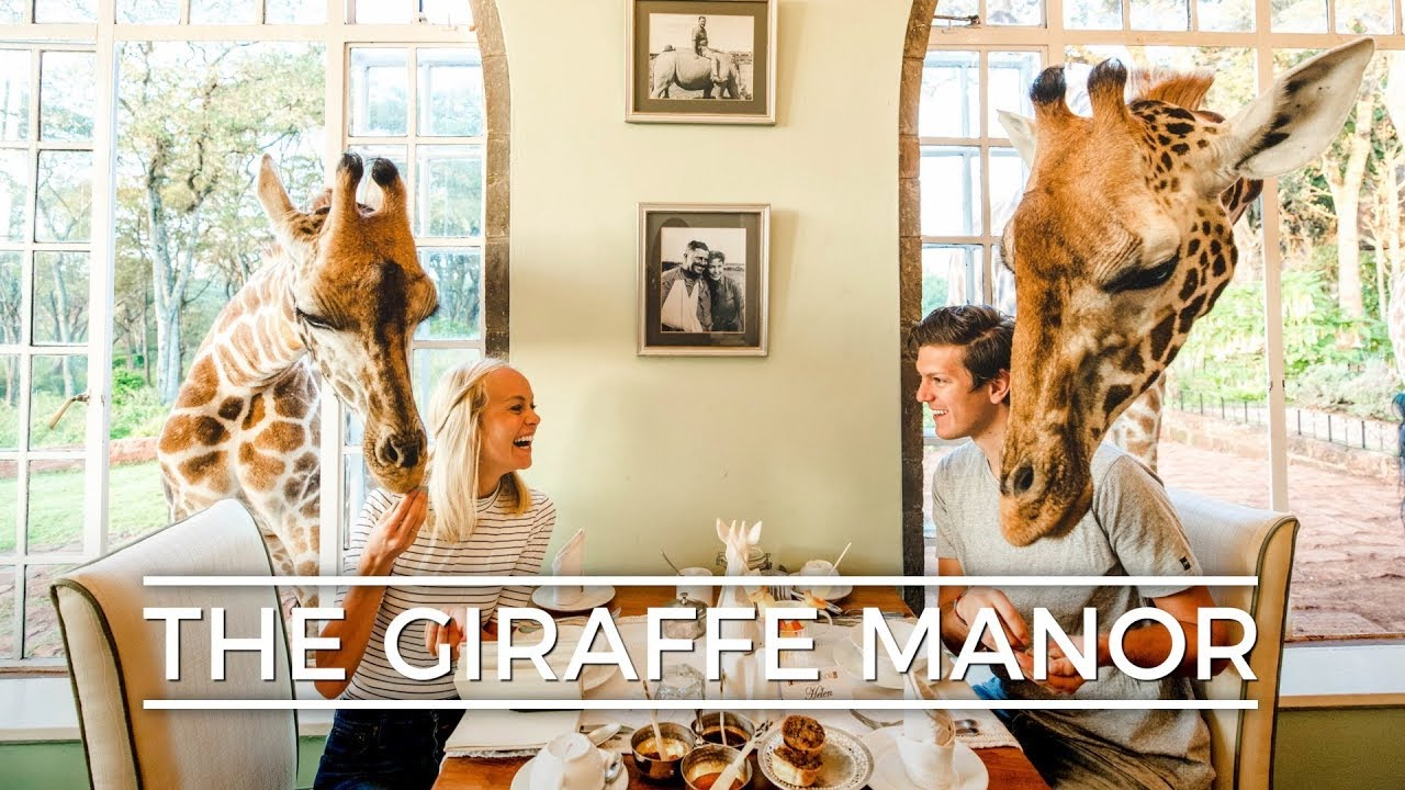 Rooms: Staying At The GIRAFFE MANOR!