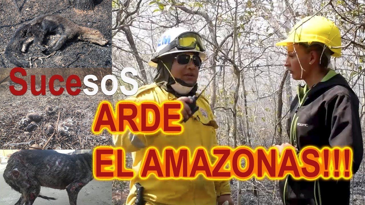 RESUMEN INCEDIO EN EL AMAZONAS LO VIVI EN SUCESOS