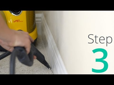 How To Get Rid Of Bed Bugs, Step 3 / 4: Steam & Clean The Room