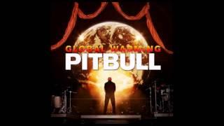 Pitbull feat. Chris Brown - Hope We Meet Again [HQ/HD]