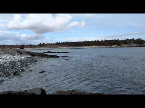 Maine Ocean front 70 Acres For Sale!  Downeast Maine Real Estate with beautiful Maine Ocean Frontage