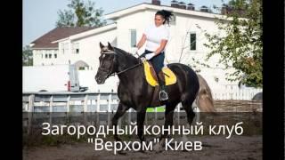 Заміський кінний клуб ''Верхи'' Київ