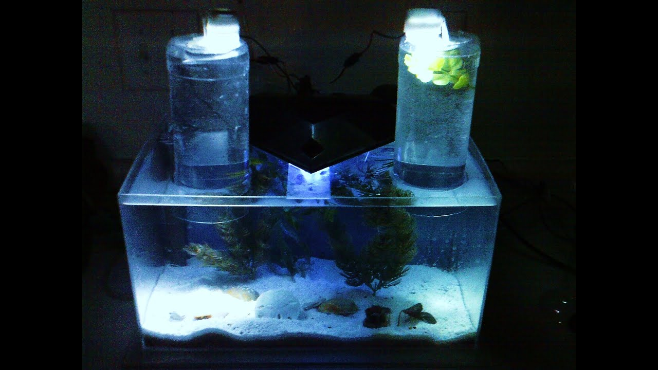 Nano acrylic saltwater tank diy with how it was made youtube for Nano aquarium