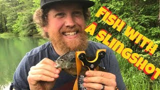Fish with a slingshot Catch and cook
