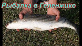 Рыбалка в Геленджике Что и как ловить.