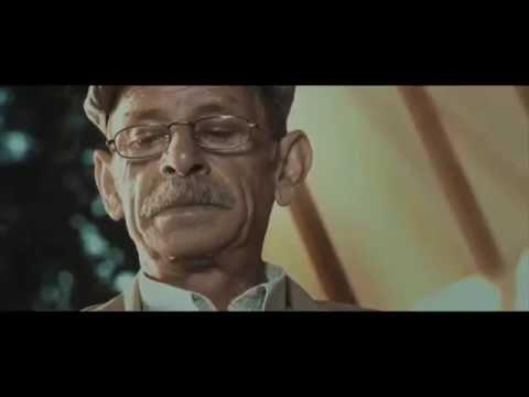 30 Bird - Ömer Halisdemir 's Wonderful Video