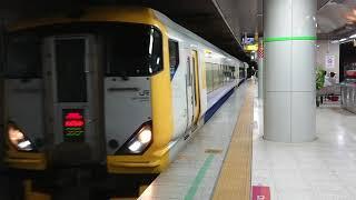 E257系500番台特急さざなみ東京駅到着