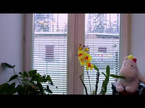 🔌Технологии будущего: как работают окна с подогревом?