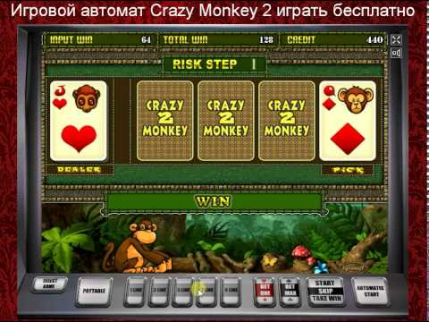 Самое популярное казино онлайн