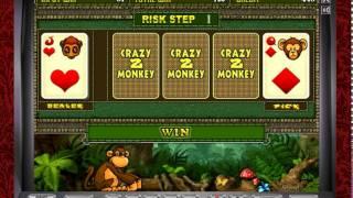 Автомат Crazy Monkey 2 – играйте Обезьянки 2 в казино Вулкан