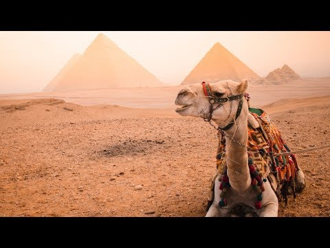How to travel to Egypt SOLO! | what nobody tells you!