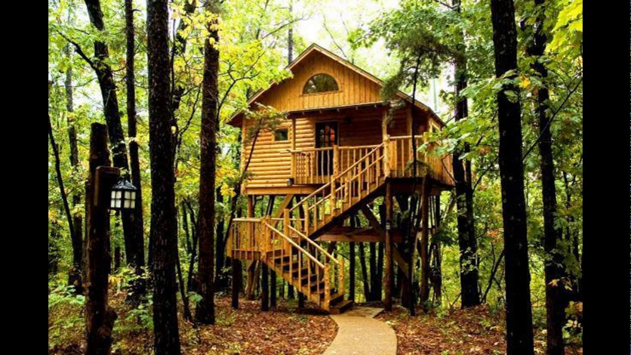 Tree House Interior, Tree House Plans, Kids Tree Houses, Best Building Tree  Houses - YouTube