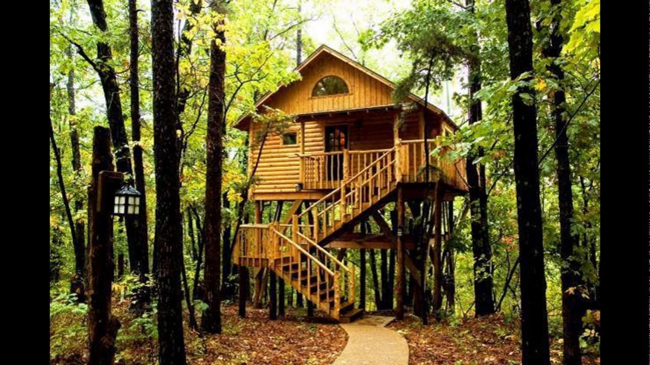 Tree House Interior, Tree House Plans, Kids Tree Houses