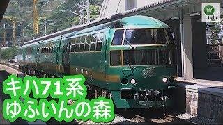 【JR鹿児島本線】キハ71系特急「ゆふいんの森93号」 東郷駅通過 JR series kiha71 Ltd Express Yufuin no mori