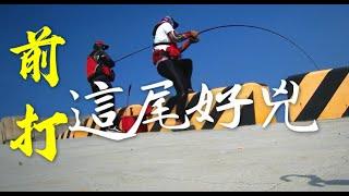 """""""岸""""燃銷魂-釣魚週記2"""