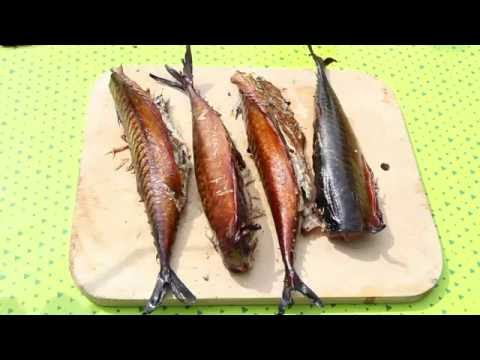 Рыба горячего копчения курсовая
